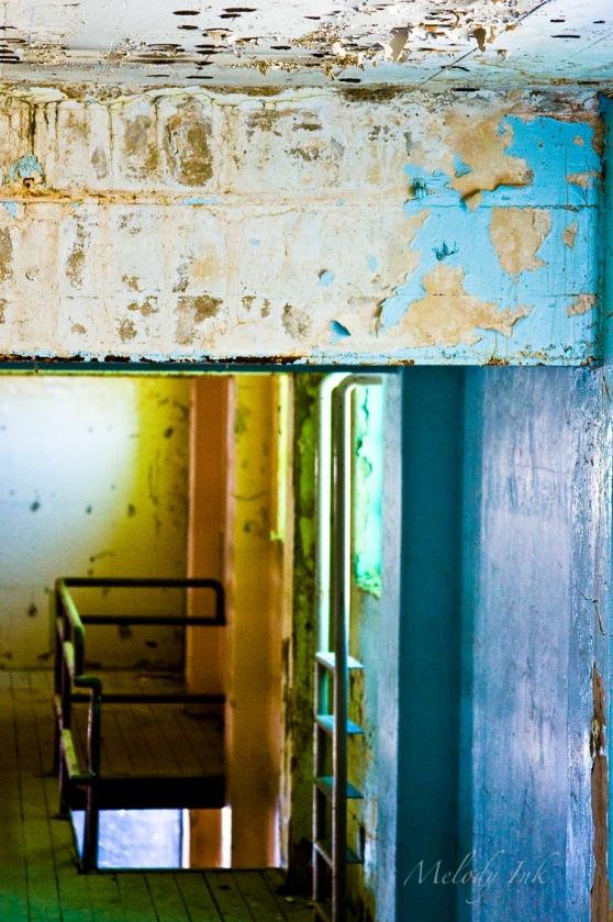 colors of prison II sm wm