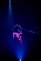 circus 5