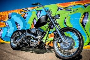bike 1_w sm copy