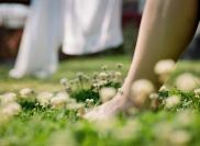 clover-feet